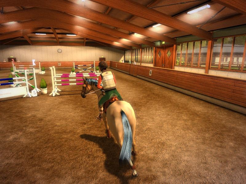 336Симулятор уход за лошадью